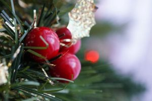 Holiday Decorations Class @ Historical Society of Harford County | Bel Air | Maryland | United States